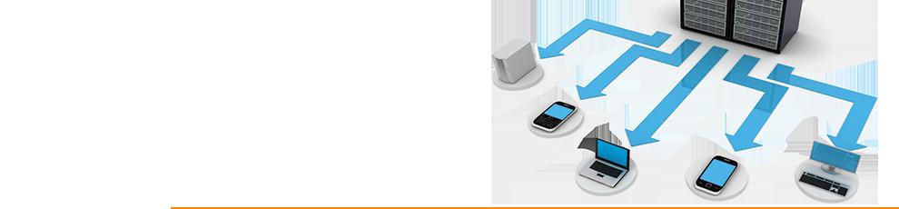 TRI - A Full Service CRO+ - Services